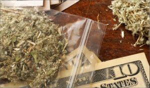 Marijuana Defense Attorney